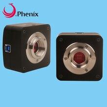 Pherix 6,3 мегапикселя высокая частота кадров Высокая чувствительность SONY сенсор микроскоп камера HD цифровой USB3.0 выход для измерения/фотографии