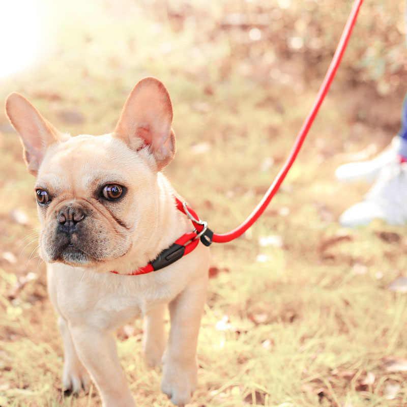ナイロン犬 P リーシュ小型品種犬猫ペットの子犬の訓練リーシュスリップチェーンリードロープチワワテディ