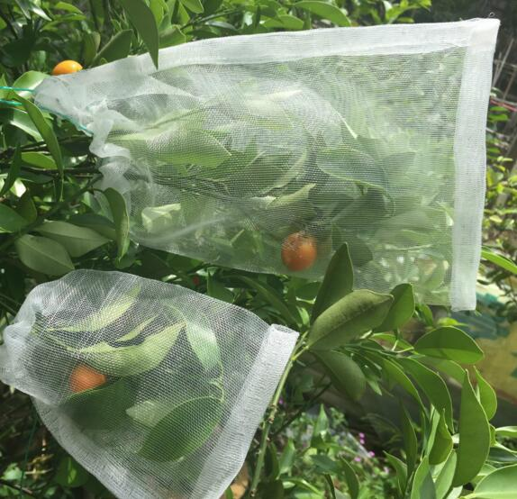 10 Pcs 30*40cm Garden Insect Barrier Net Protect Bags Plant Seed Carrier  Bag, Mosquito Bug Insect Barrier Bird Net Bird Control In Grow Bags From  Home ...