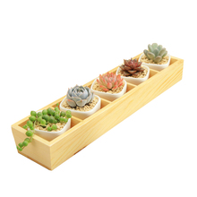 Set of Modern Decorative Small White Square Ceramic Succulent Plant Pot 5 Flower Planters with 1 Wooden Tray Box Home Decor