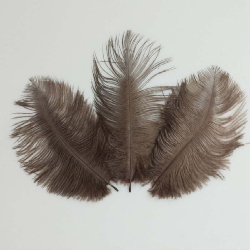 Holiday Decorations 10pcs beautiful coffee ostrich feathers 6-8 inches15-20 cm wholesale decoration
