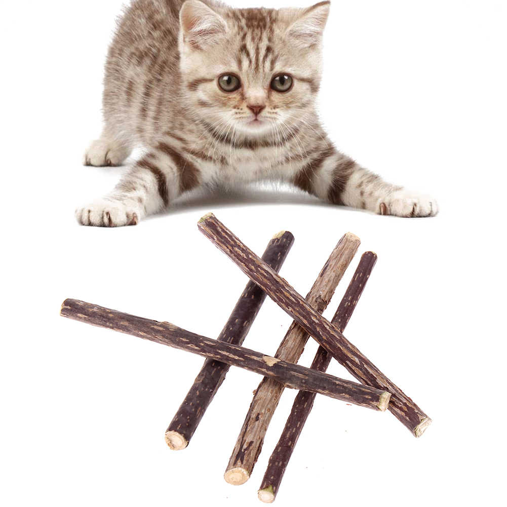 Игрушка для кошек большая чистая натуральная кошачья мята закуски ПЭТ мольный мотив зубная паста палочка Silvervine игрушки для кошек чистящие зубы продукты