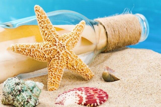 Verano arena playa conchas seashells deriva botella paisaje Sala ...