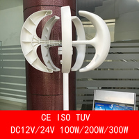 fancy design white 5 blades DC12V/24V 100W 200W 300W wind power generator with wind controller for home CE ISO TUV