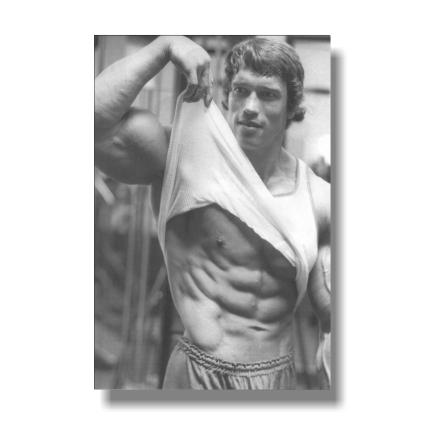 Poster Arnold Schwarzenegge Body Building Room Art Wall Cloth Print 518