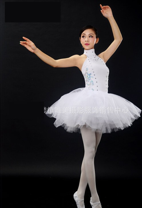a6f3a6431 Adult professional Ballet costume dance dress women performance ...