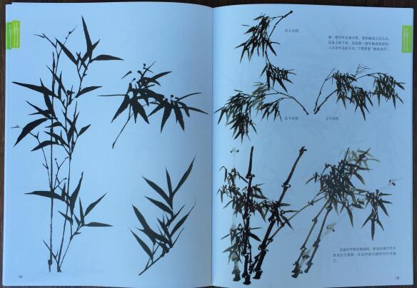 Chinesische Malerei Buch Lernen Bambus Malen Oriental Vogel Blumen