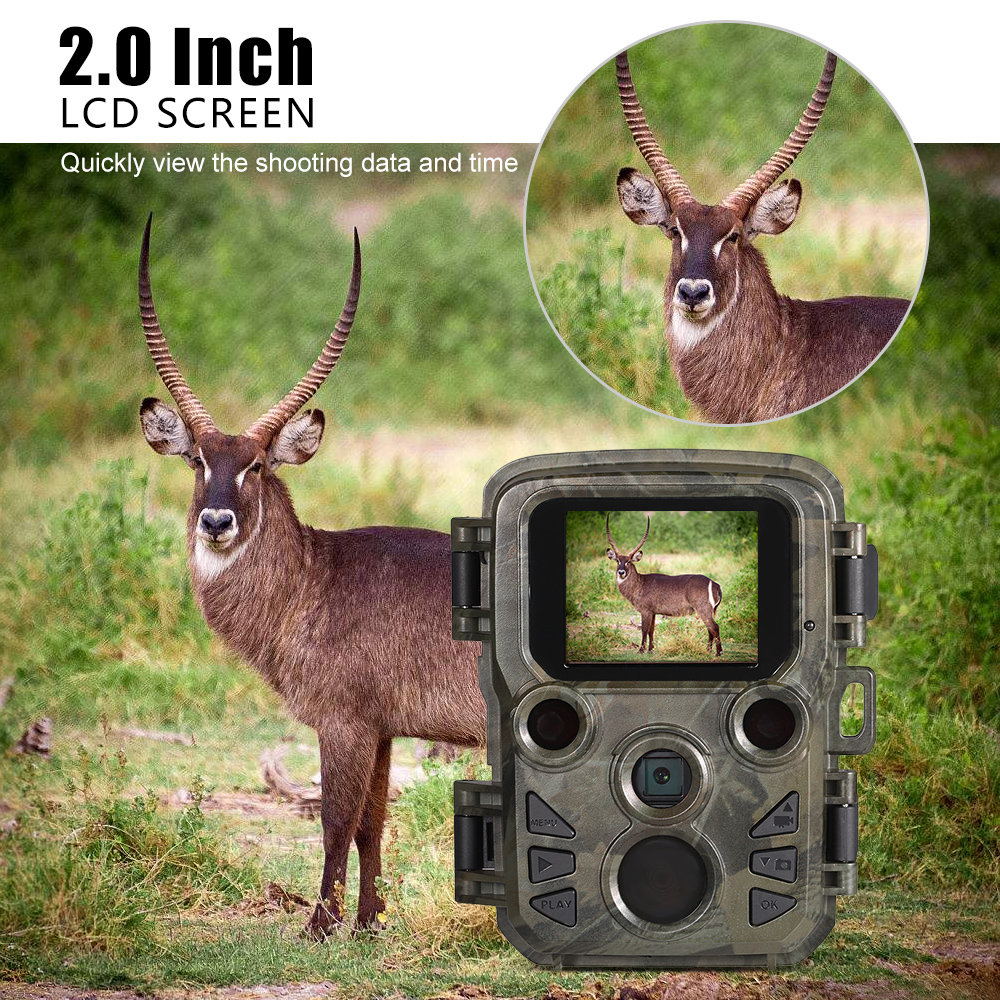 Mini Trail Camera H501 12MP 1080P Hunting Game Camera Trap 0.45s Motion Wildlife CameraMini Trail Camera H501 12MP 1080P Hunting Game Camera Trap 0.45s Motion Wildlife Camera