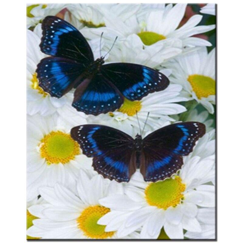 Daisy Kupu-kupu DIY 5D berlian bordir penuh manik set Pola - Seni, kerajinan dan menjahit