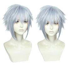 Game Kingdom Hearts III Riku Short Grey Mixed Color Wig Heat Resistant Synthetic Hair Cosplay Costume Wigs + Free Wig Cap