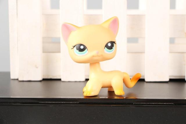 Pet Shop #339 Naranja Gato de Pelo Corto Brooke Hayes Ojos Azules