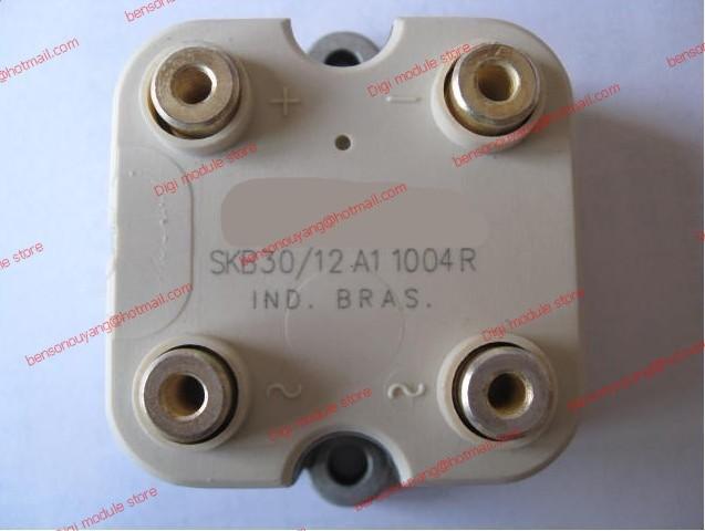 SKB30/12A1 SKB30 12A1 Free ShippingSKB30/12A1 SKB30 12A1 Free Shipping