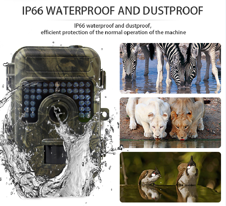 HH 662 16MP 1080P Hunting camera 0 6S Motion Digital Infrared Trail Camera Night vision wild