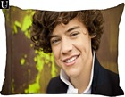 Custom Harry Styles ...