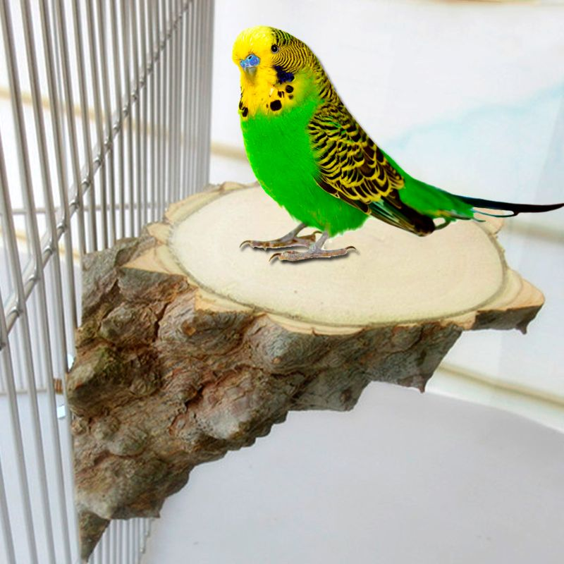 Pet Platform Natural Wood Perch Parrot Hamster Squirrel Bird Cage Playing Stand Jumping Board Accessories Products Supplies Grin