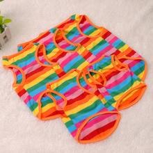 Pets Colorful Clothes