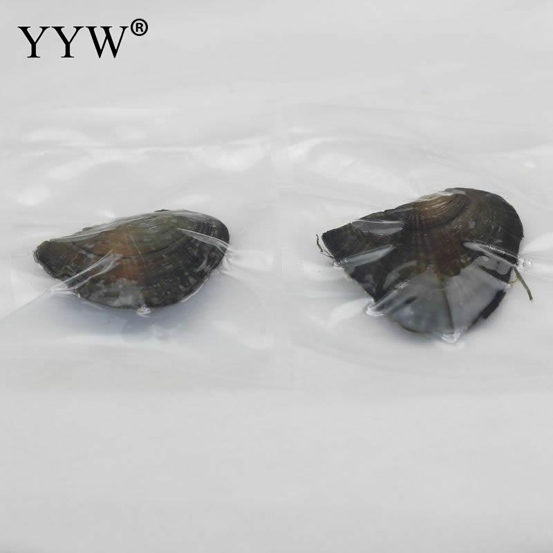 Vacuum Pack Oyster Wish Freshwater Pearl Pearl Mussel 2017 Shell With Pearl More Color For Choice Pearl Mysterious Gift Surprise