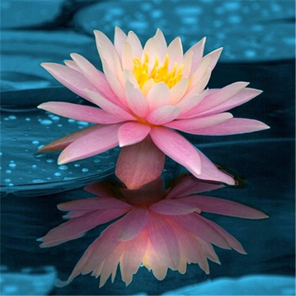 Ytg Full 5d Diy Diamond Painting Lotus Flower Needlework Embroidery