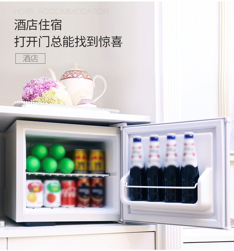 17L Mini Kühlschrank mit Schloss 2 Schicht Einzigen Tür Kleinen Kühlschrank Maske Kosmetische Gefrierfach Hause Kleine Mini Kühlschränke Geräuscharm - 5