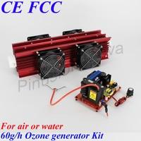 Pinuslongaeva 3g 5g 8g 10g 15g 20g 40g 60g 100g/h adjustable Quartz tube type ozone generator Kit
