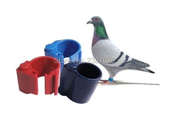 waterproof passive 134.2KHz RFID pigeon rings with Hitag S256 chip for Sale 134 2khz rfid pigeon tag ring with hitag s256 chips for identification and tracking 10pcs lot