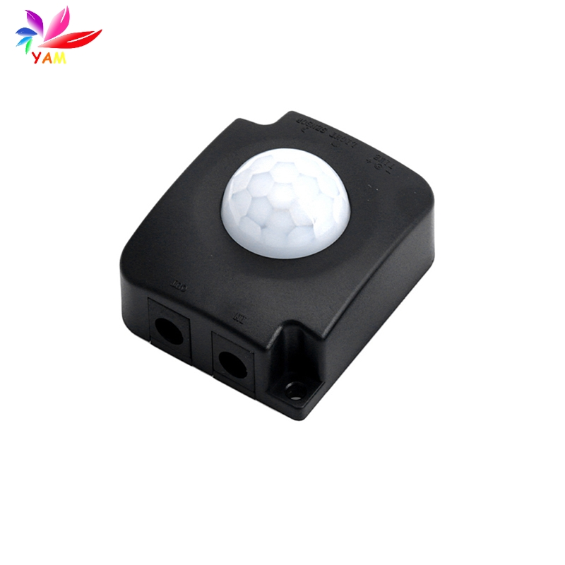Lights & Lighting Enthusiastic Automatic Infrared Sensor Switch Pir Body Motion Detector Dc 12 V 24 V 10a-25 Elegant And Graceful Lighting Accessories
