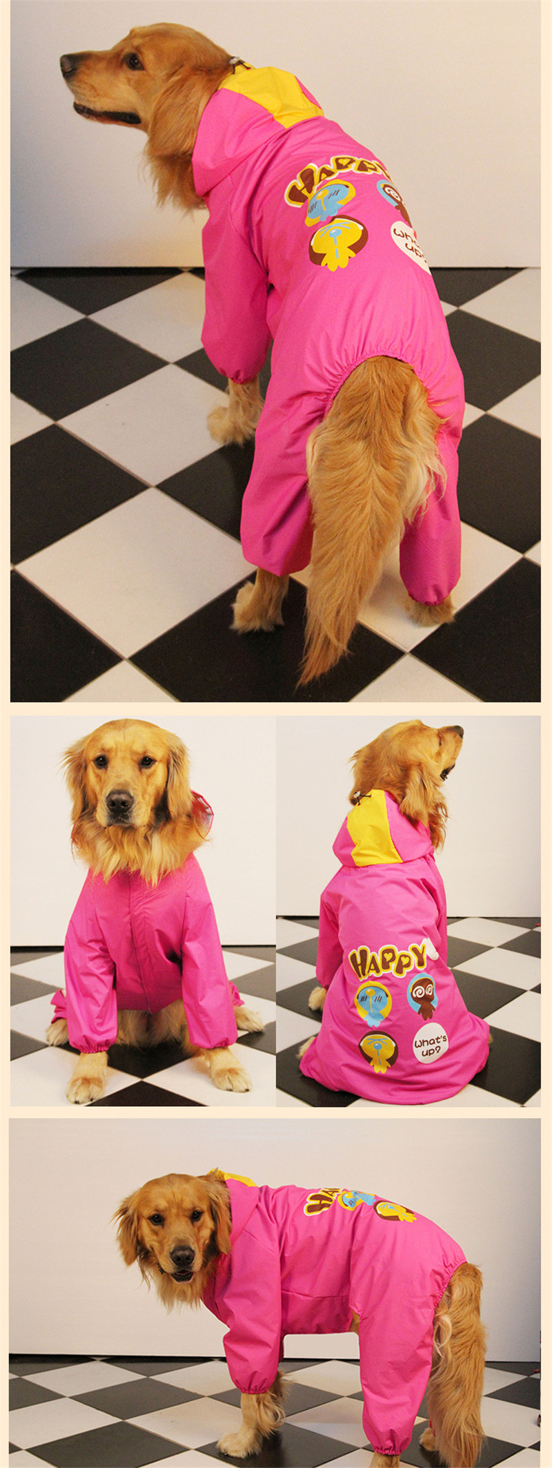 dog raincoat (11)
