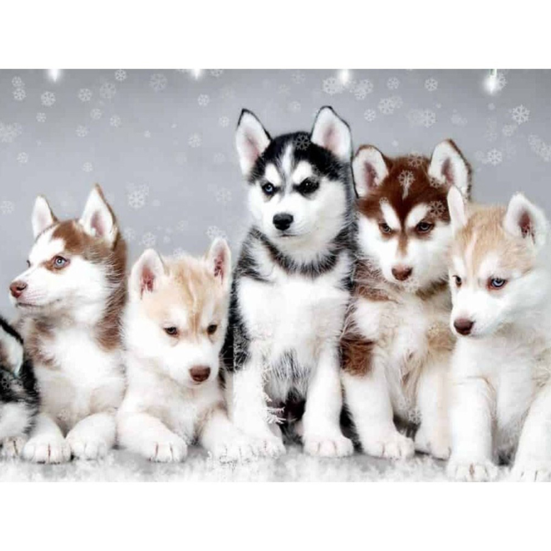 3D Cross Stitch Mosaic Cute Husky Full Square/Round Diamond Embroidery Diamond Painting Full Display 5D Rhinestone Home Decor