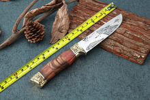 Camp Survival Fixed Knives 5CR15MOV Blade Hunting Knife Utility Tactical Knife EDC Tools Multi Outdoor Hunting Tool Best Quality