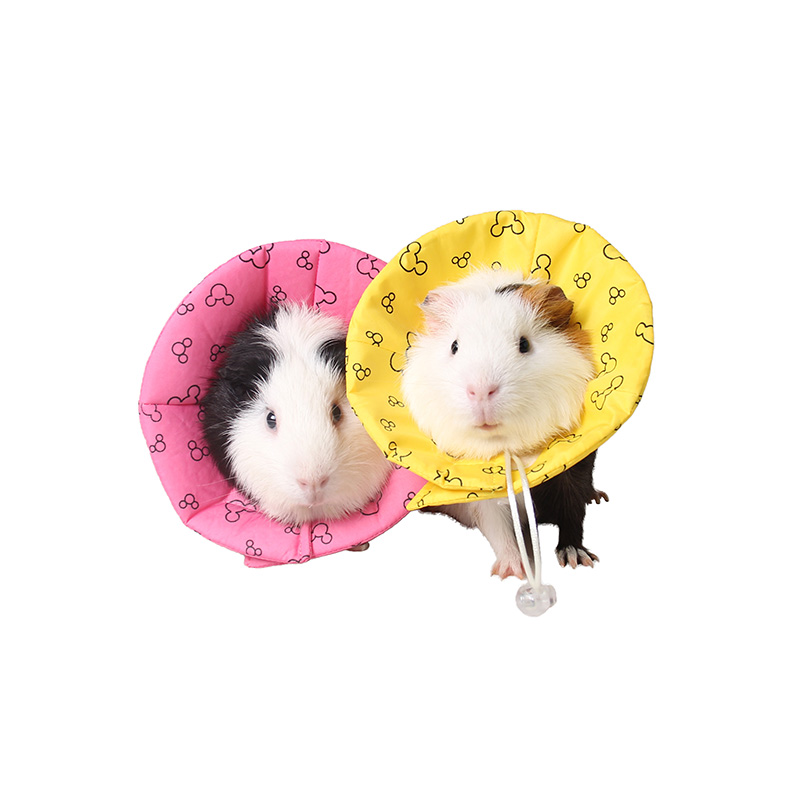 Small Pet Accessories Guinea Pig Hedgehog Hamster Dutch Rats Rabbit Collar Medical Products Collar Harness