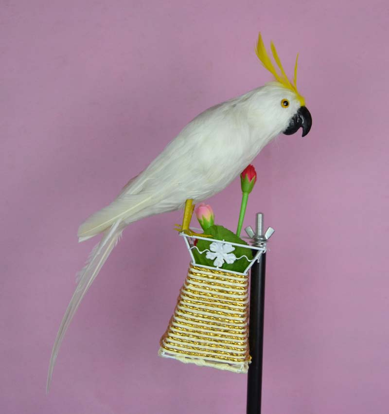 ФОТО simulation white parrot toy polyethylene & furs parrot doll gift about 40cm