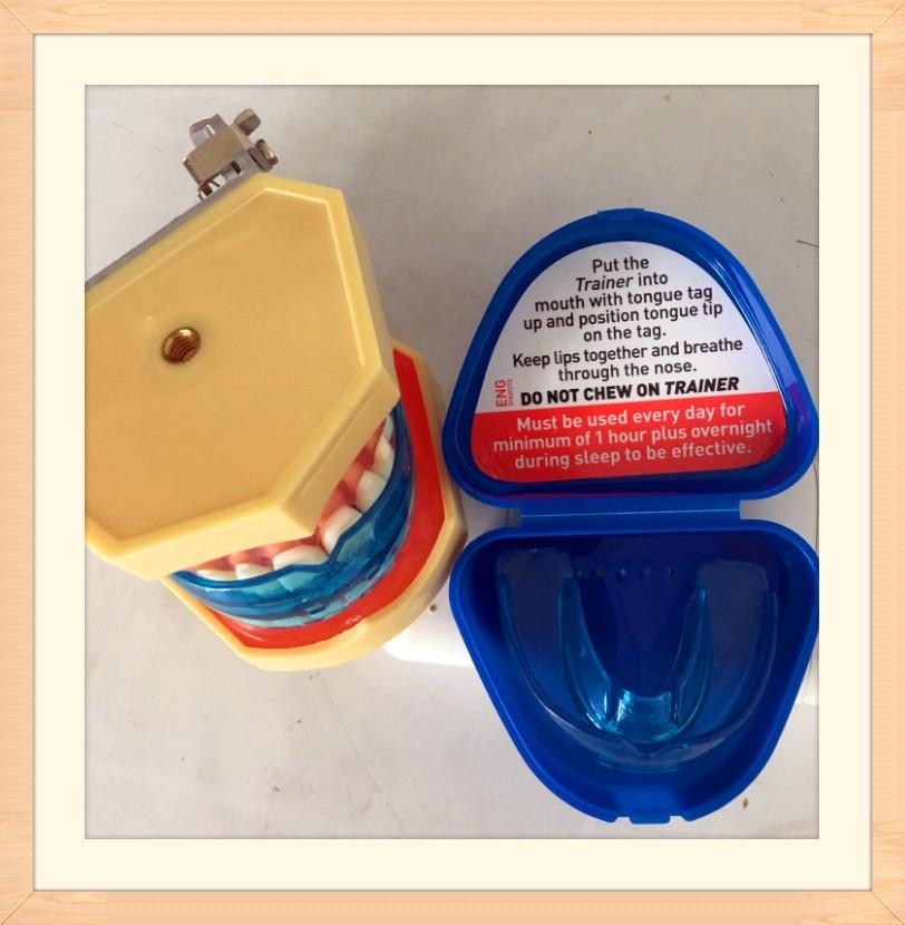 NDA Dental Oral Orthodontic Appliance Trainer Braces тіс - Денсаулық сақтау - фото 4