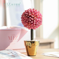 עציץ גיברת מיובש פרח לקישוט חתונה עם קופסא מתנה רעיון מתנה רומנטית ליום האהבה מתנת יום הולדת
