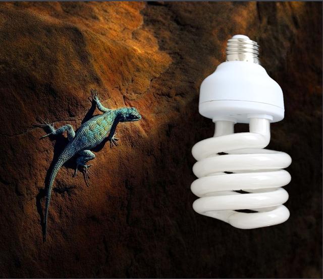 1 Pçs/lote Reptile Vivarium Fluorescente Compacta Lâmpada Luz 10.0 UVB uva UV 26 W 10.0 E27 Parafuso Luz P415
