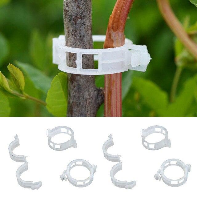 50 pz/100 pz Clip Per I Tipi di Sostegno Durevole 30mm Plastica Vegetale Piante