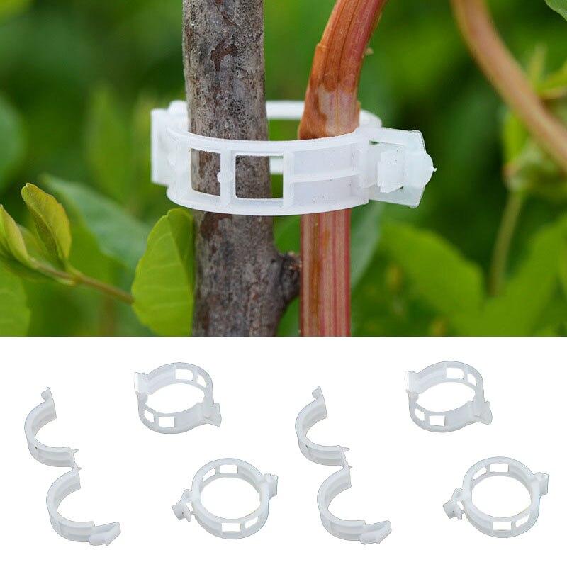 50pcs 100pcs Durable 30mm Plastic Plant Support Clips For Types Plants Hanging Vine Garden Greenhouse Vegetables Garden Ornament
