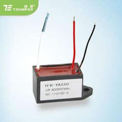 1 шт. TRUMPXP TFB-YA250 DC12V AC200-240V генератор отрицательных ионов для пыли очиститель Нагреватель часть сушилка для рук