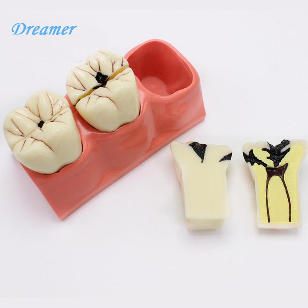 Dental Ass 33