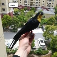 lifelike Swallow bird model polyethylene&furs simulation black bird doll gift about 30cm xf0457 стоимость