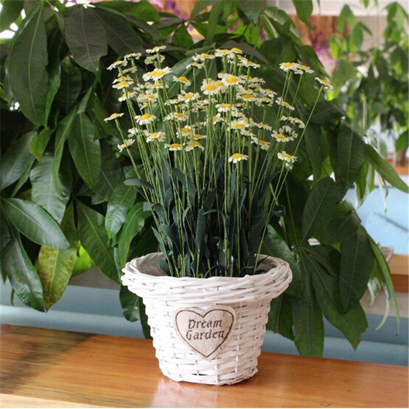 comprar hechos a mano de mimbre macetas conservante planta macetas suculentas plantas en maceta de jardn suministros sin plantas de plant