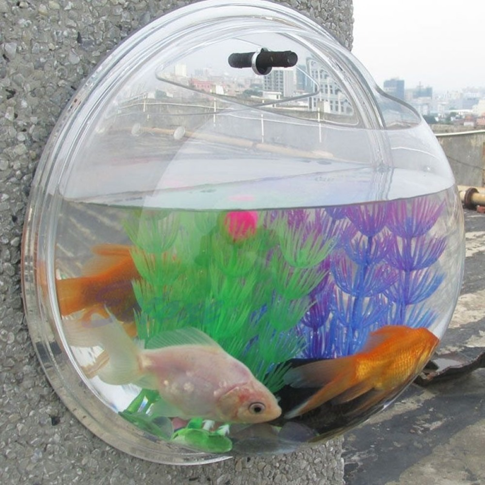 Fish aquarium price in pakistan - Hot Fish Tank Wall Mounted Bowl Aquarium Wall Hanging Plant Pot Home Decoration F1fb