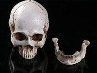 Skeleton Human Skull Ashtray Home Decor Skull Ghost Evil Skeleton Head Resin Figurine Halloween