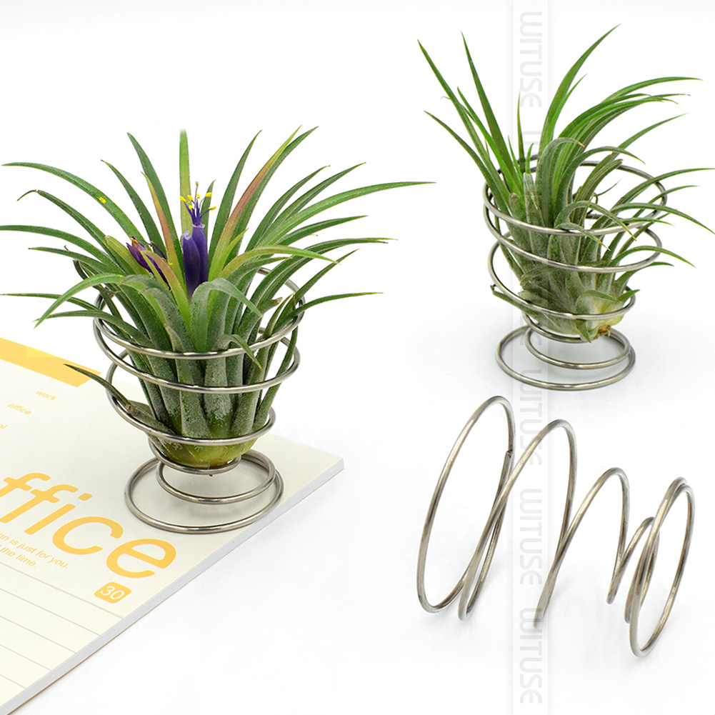 WITUSE Flash Deal! 6PCS Modern Air Plant Tillandsia Metal Wood Stand Holder Hotel Mall Decor Stand Table Desk Display Rack