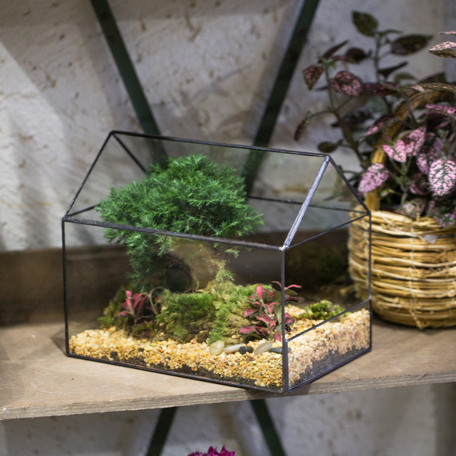 Modern Tabletop House Shape Plant Glass Container Geometric Box