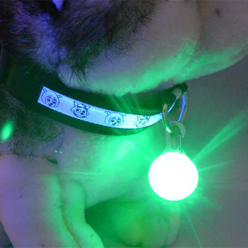 1 Pcs LED Pet Dog Collar Pendant Night Safety Pendant Luminous Night Light Collar Pedant Dog Accessories Pet Supplies