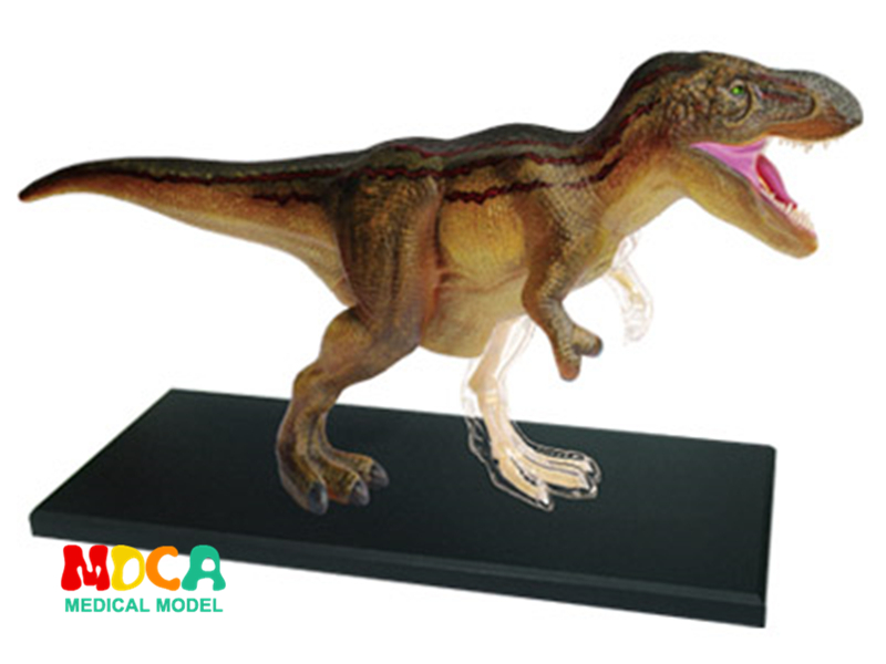 Tyrannosaurus 4d master puzzle Assembling toy Animal Biology Dinosaur organ anatomical model medical teaching model 4d master cat puzzle assembling toy animal biology organ anatomical model medical teaching skull skeleton model science toys