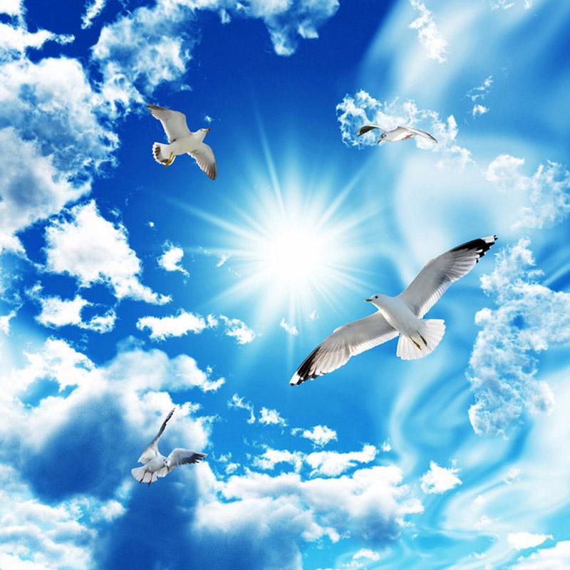 Blauen Himmel Weisse Wolken Sonnenschein Fliegen Seagull 3d Stereo Decke Tapete Thema Hotel Wohnzimmer Mode Innendecke