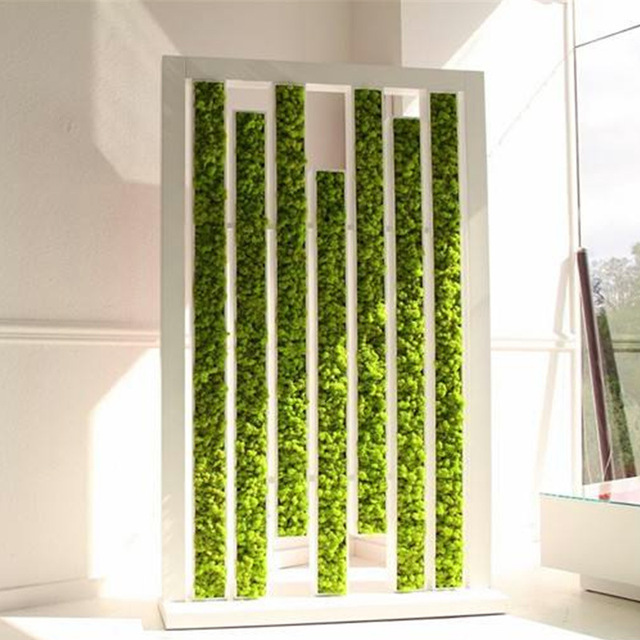 High quality artificial green plant immortal fake flower Moss grass home living room decorative wall DIY flower mini accessories 3