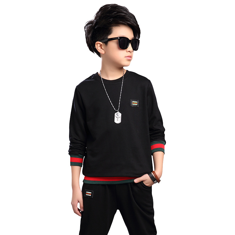 Boy-autumn-suit-2017-big-boy-childrens-clothing-childrens-spring-and-autumn-long-sleeved-sportswear-boy-sweater-two-sets-7-5