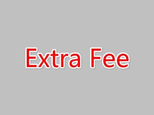 Extra Fee 1